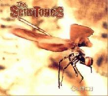 The Semitones: Glitch