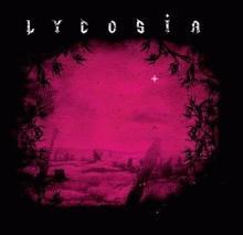 lycosia