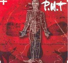 PMT: Acupuncture for the soul