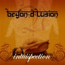 Beyon-d-lusion: Intuispection