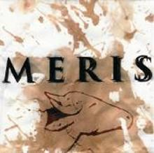 meris: demo cd