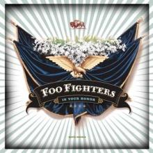foo fighters : in your honor