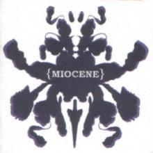 Miocene: Refining the theory