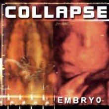 collapse : embryo