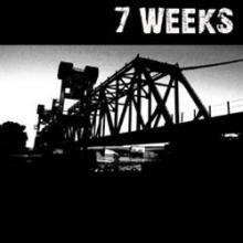 7_weeks.jpg