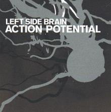 left_side_brain_action_potential.jpg