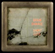 brain_damage_short_cuts.jpg