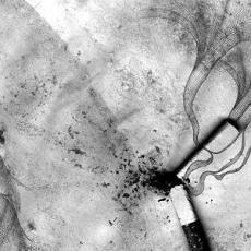 dona_confuse_broken_silver_cigarette_in_tristan_da_cunha.jpg