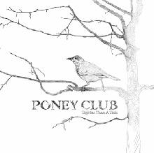 poney club: Tighter than a tick