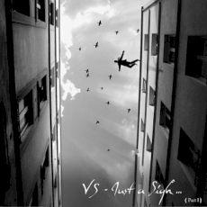 VS - Just a sigh
