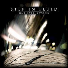 Step in Fluid - One step beyond