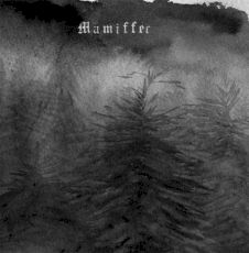 Mamiffer
