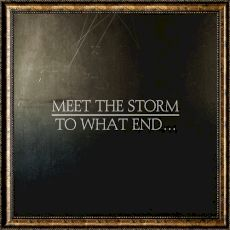 Meet the Storm - To what end...