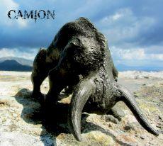 Camion - Bulls