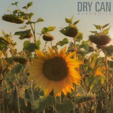 Dry Can - Meanwhile
