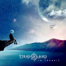 Straybird - In Transit