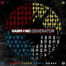 Harmonic Generator - heart flesh skull bones