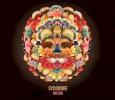 Sycomore - Nectar