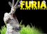 Furia Sound 2010